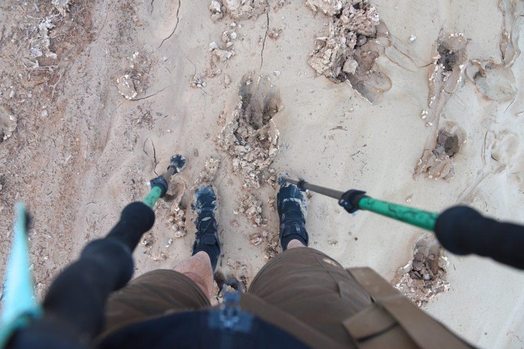 Schlammiger Boden im Paria Canyon